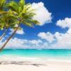 Райский остров-убийца