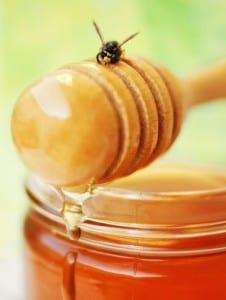 Пчелы тоже любят мёд