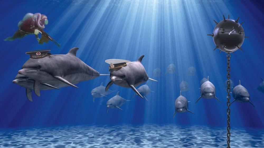 voennye-delfiny.jpg