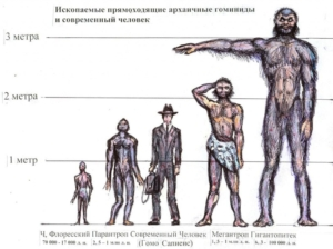 Рисунок Александра Белова