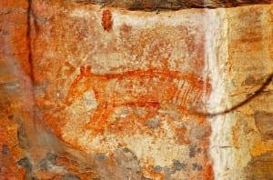 Тасманский леволис