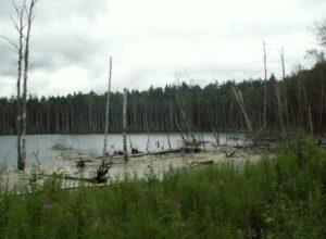 Озеро Смердячье