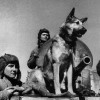 В бою— собачий батальон