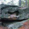 В дебрях каменного леса