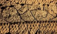 Следы колес в 12 миллионов лет