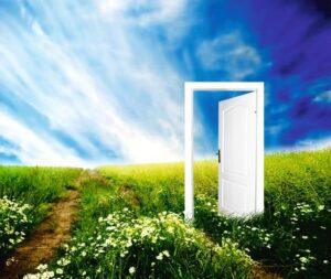 Дверь в поле