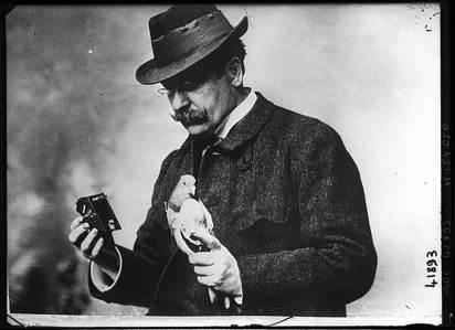 У шпионов Первой мировой не было раций. Сведения передавали с помощью военных почтовых голубей